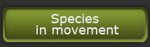 Species in movement