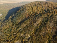 Aerial photo of a hickory-sugar maple forest