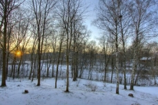 Photo of a forested landscape, in winter
