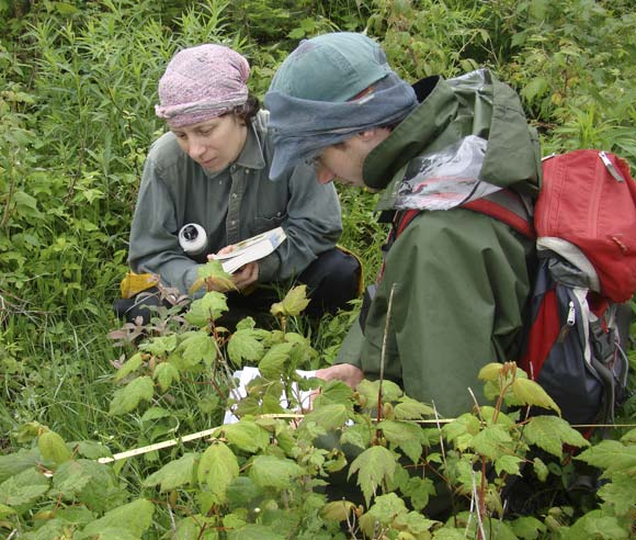 Photo of Isabelle Aubin and a student looking at plants on the forest floor
